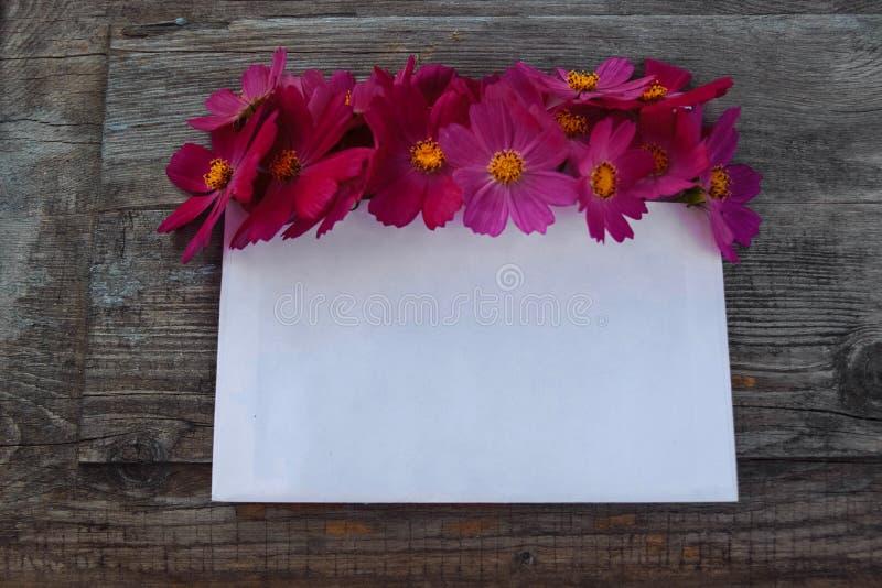 Bloemen met lege kaart voor gelukwensen royalty-vrije stock afbeelding