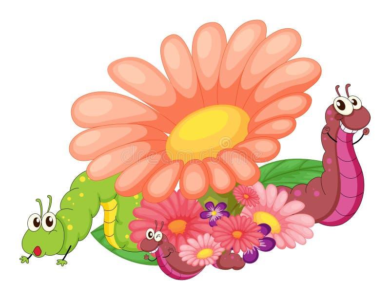 Bloemen met rupsbanden vector illustratie