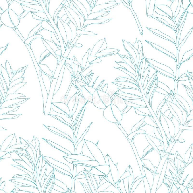 Bloemen naadloos patroon, blauwe lijn spleet-blad Zamioculcas-installatie stock illustratie