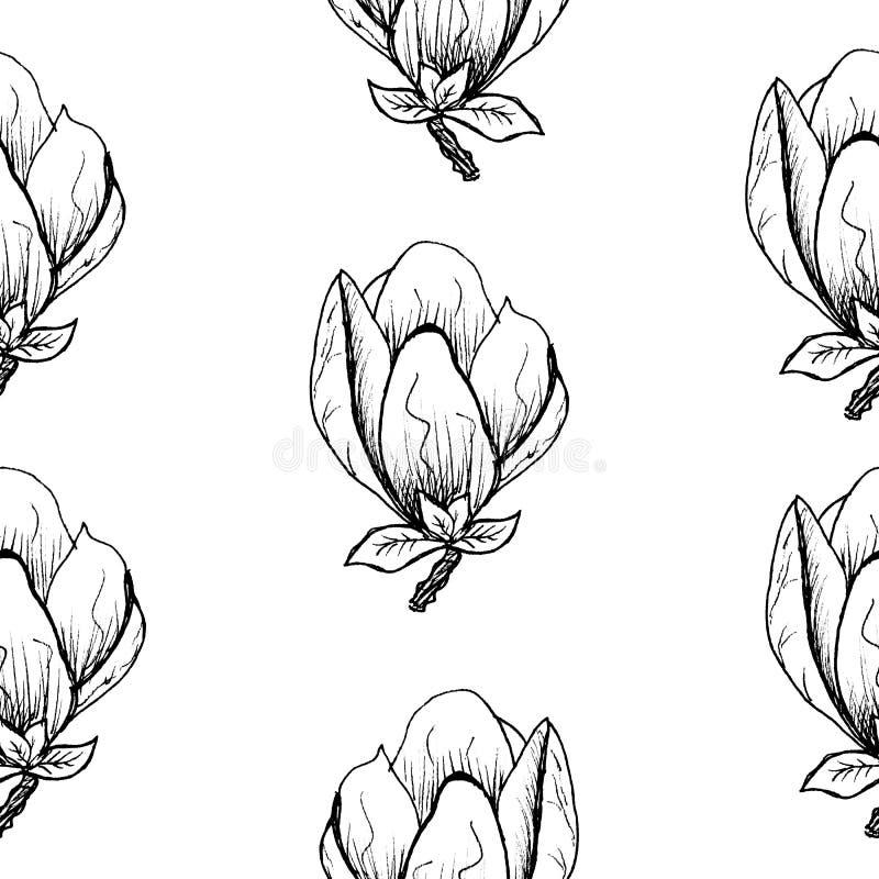 Bloemen naadloos patroon Bloeiende magnolia op een witte achtergrond Druk voor stof en andere oppervlakten De illustratie van de  vector illustratie