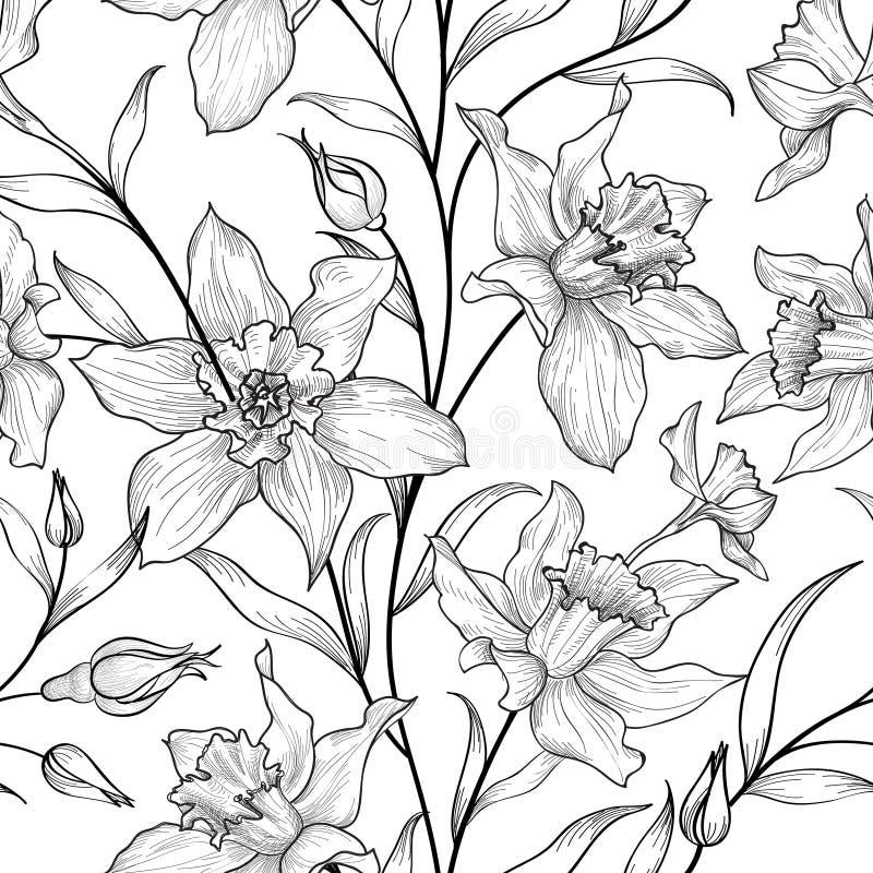 Bloemen naadloos patroon Bloem zwart-witte achtergrond flor stock illustratie