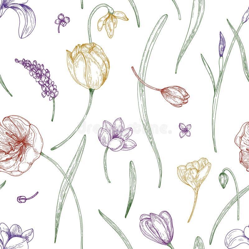 Bloemen naadloos patroon met mooie bloeiende die tuinbloemen met gekleurde contourlijnen op witte achtergrond worden getrokken royalty-vrije illustratie