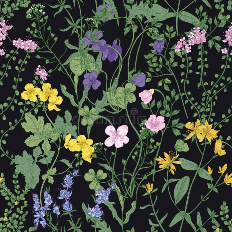 Bloemen naadloos patroon met romantische tot bloei komende wilde bloemen en weide die kruidachtige installaties op zwarte achterg stock illustratie