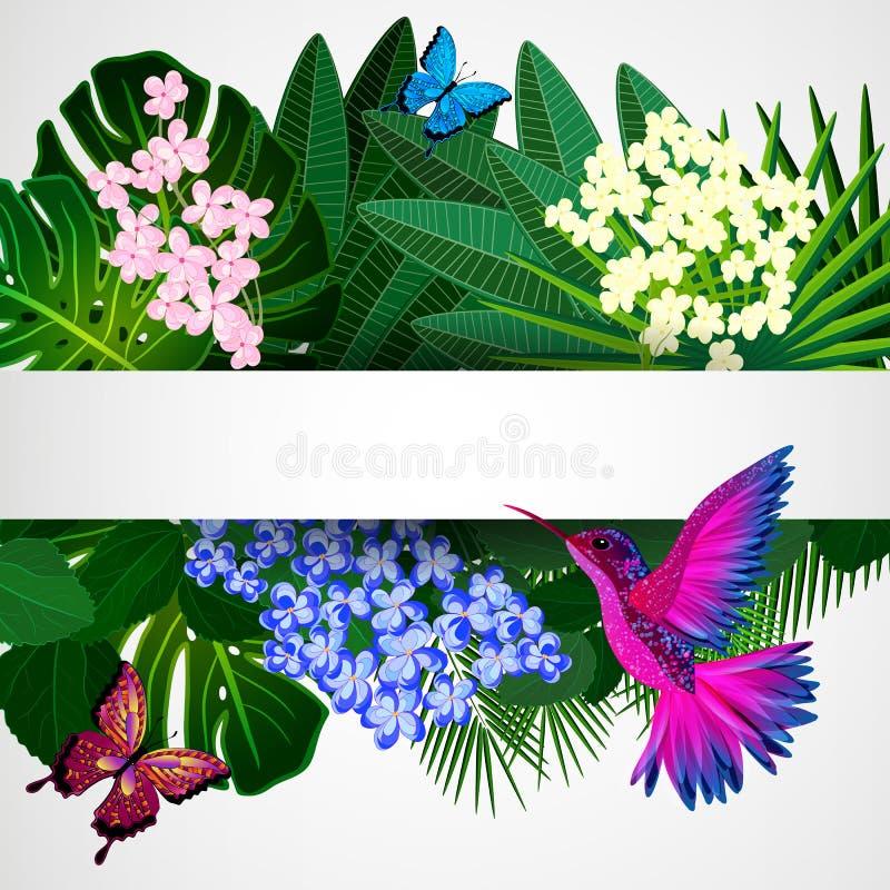 Bloemen ontwerpachtergrond Tropische bloemen, vogels stock illustratie