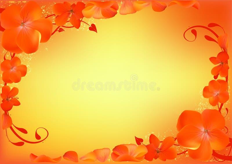 Bloemen Ooievaarsbek als achtergrond stock illustratie
