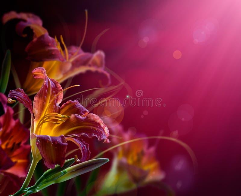 Bloemen op een rode achtergrond. Met exemplaar-ruimte stock fotografie