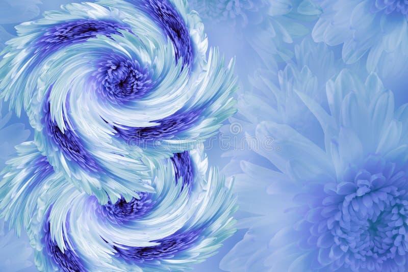 Bloemen op onscherpe wit-blauw-turkooise achtergrond Blauw-wit-violette bloemenchrysant bloemencollage De samenstelling van de bl stock fotografie