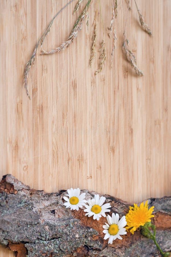 Bloemen op oude schors, plattelander royalty-vrije stock afbeelding