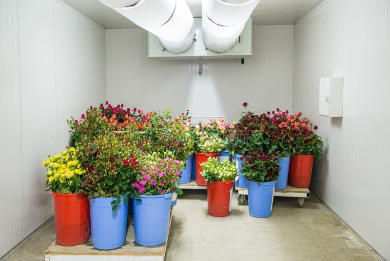 Bloemen in opslag stock foto