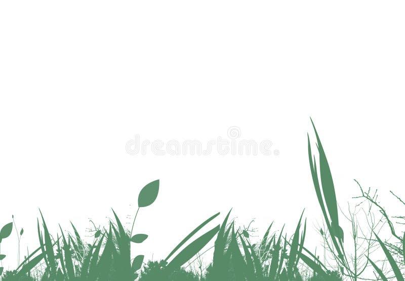 Bloemen over wit stock illustratie