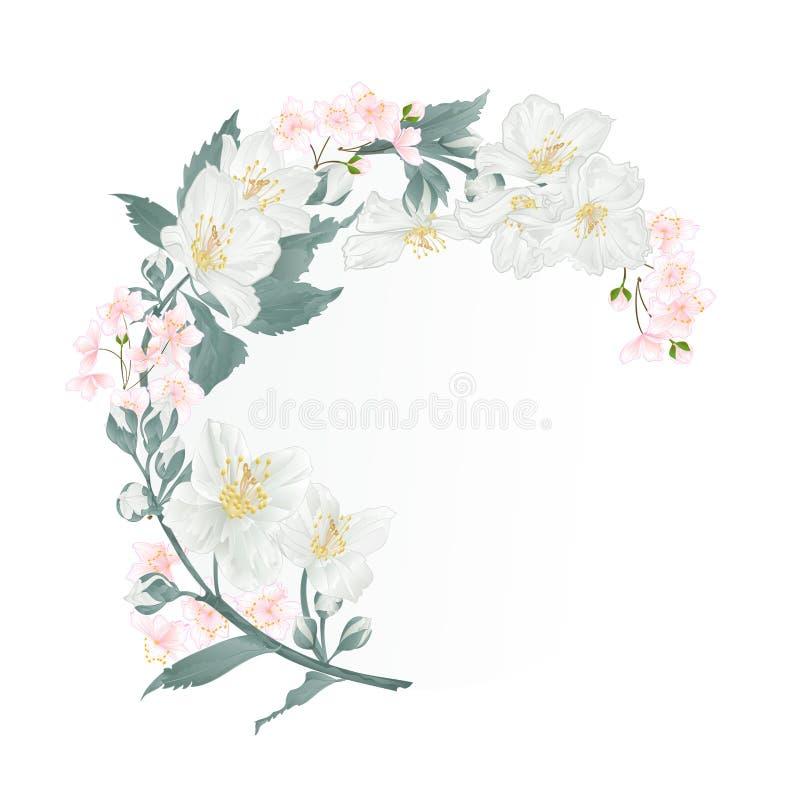 Bloemen rond kader met Jasmijn en knoppen uitstekende feestelijke als achtergrond vector vector illustratie