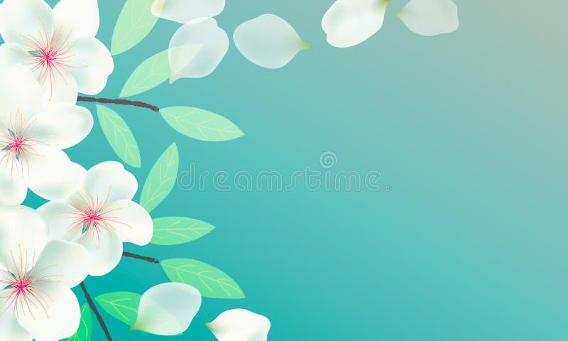 Bloemen, takken en bladeren van Sakura-achtergrond Kersenbloesems, vliegende bloemblaadjes Takken met groene bladeren royalty-vrije illustratie
