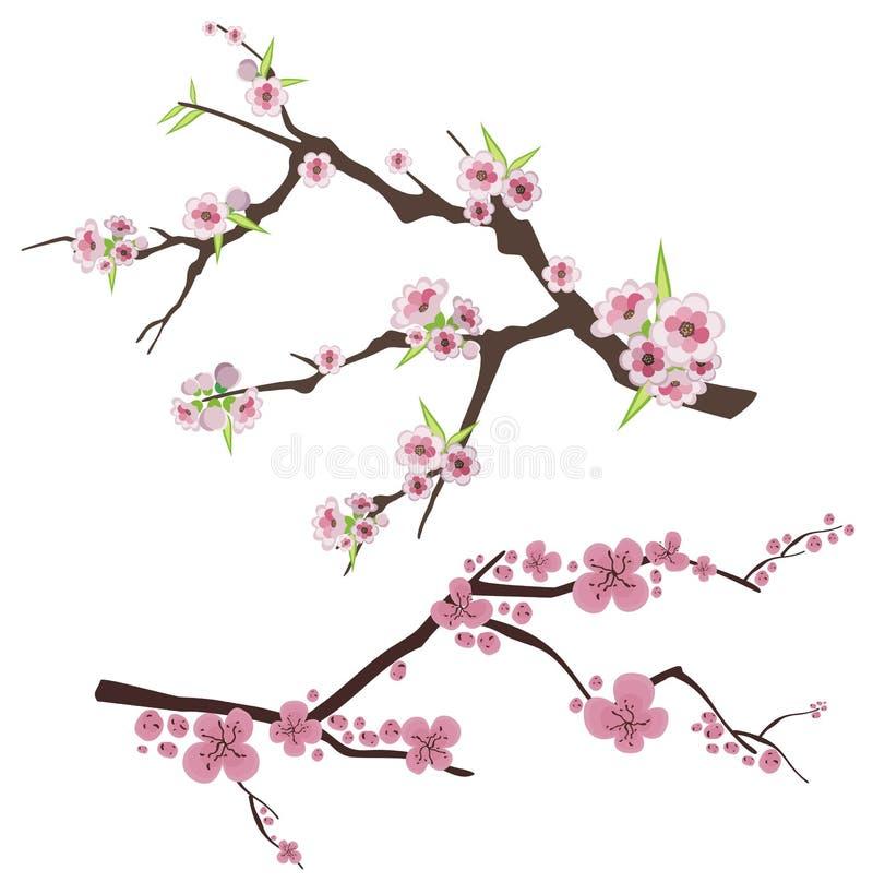 Bloemen takreeks vector illustratie