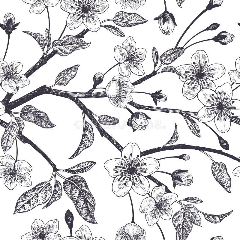 Bloemen uitstekend naadloos patroon met Japanse kers royalty-vrije illustratie