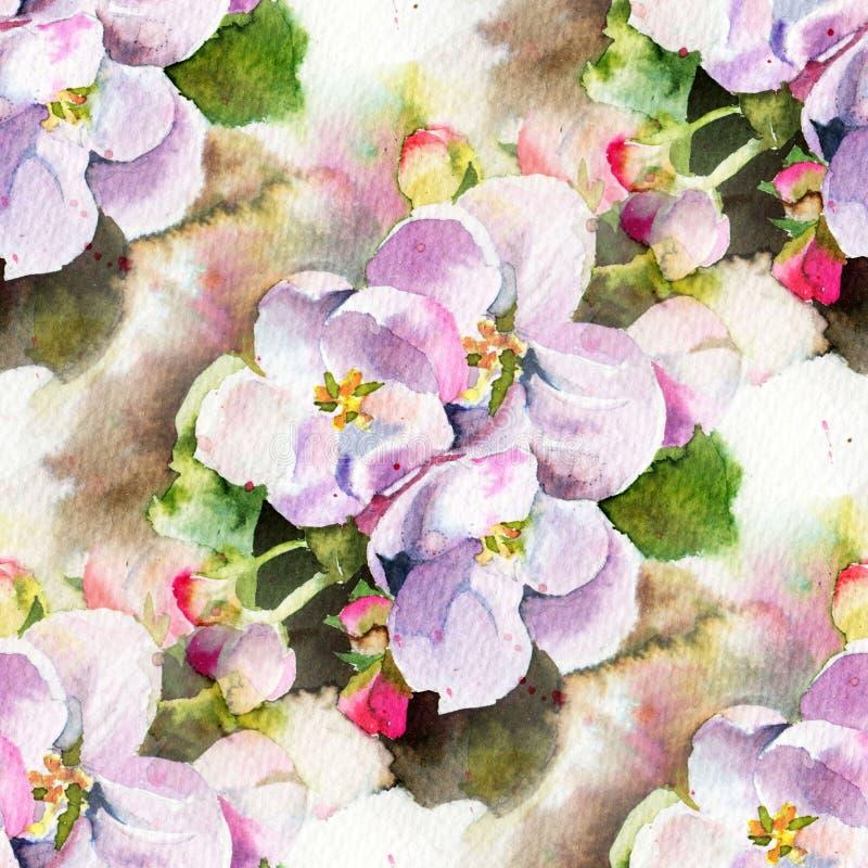Bloemen van appel royalty-vrije illustratie