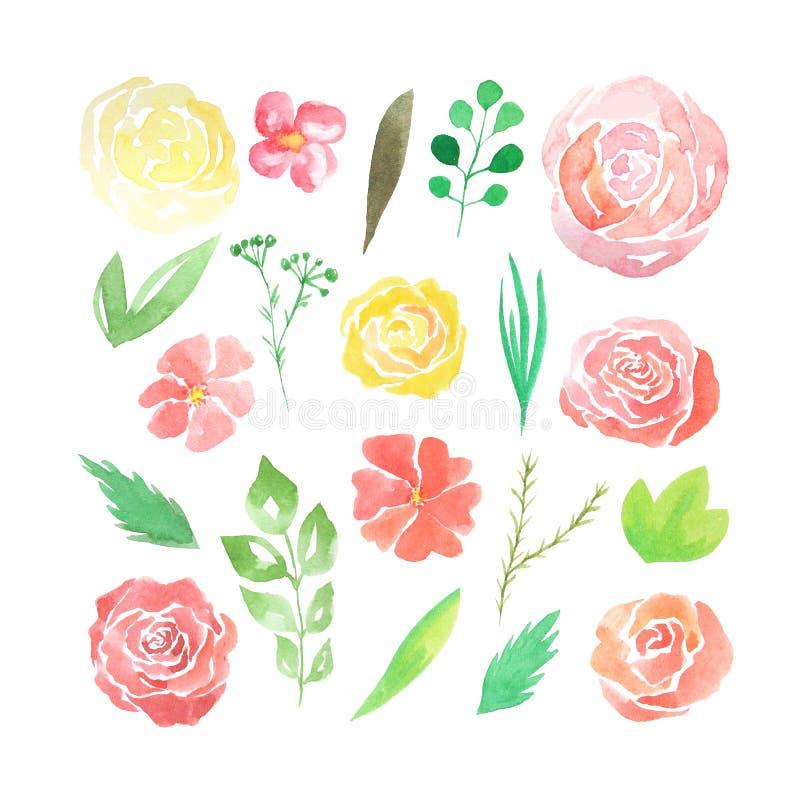 Bloemen van de waterverf de losse vorm, bladeren, takken