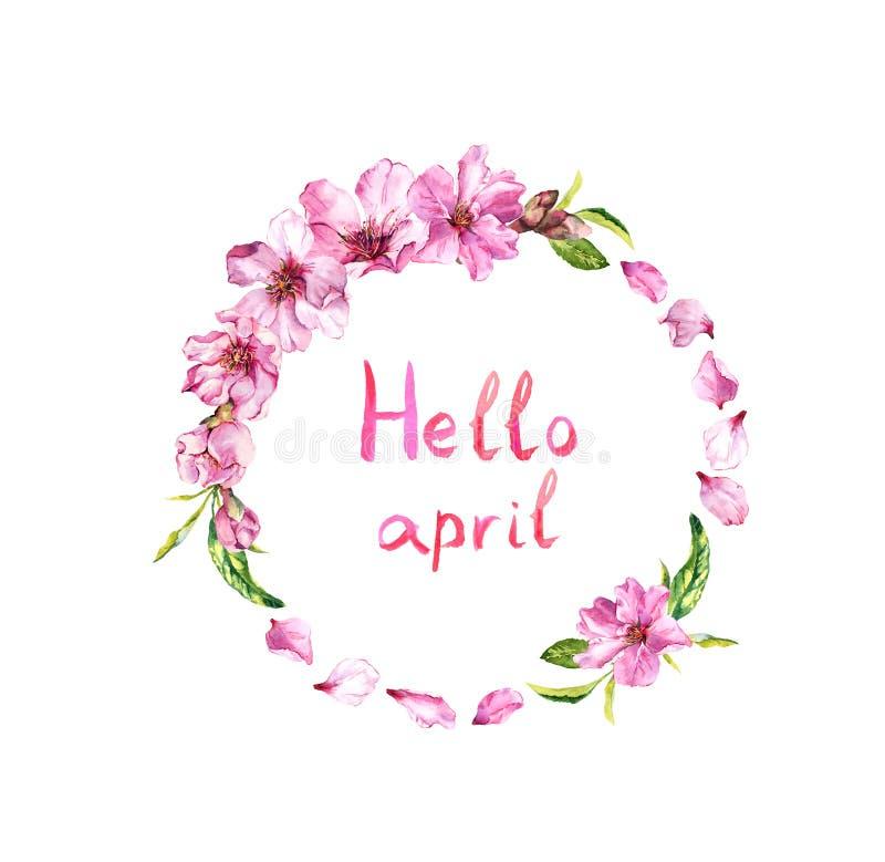 Bloemen van kersenboom, de bloesem van de lentesakura, appelbloemen Bloemenkroon, tekst Hello april Het kader van de waterverfcir royalty-vrije illustratie