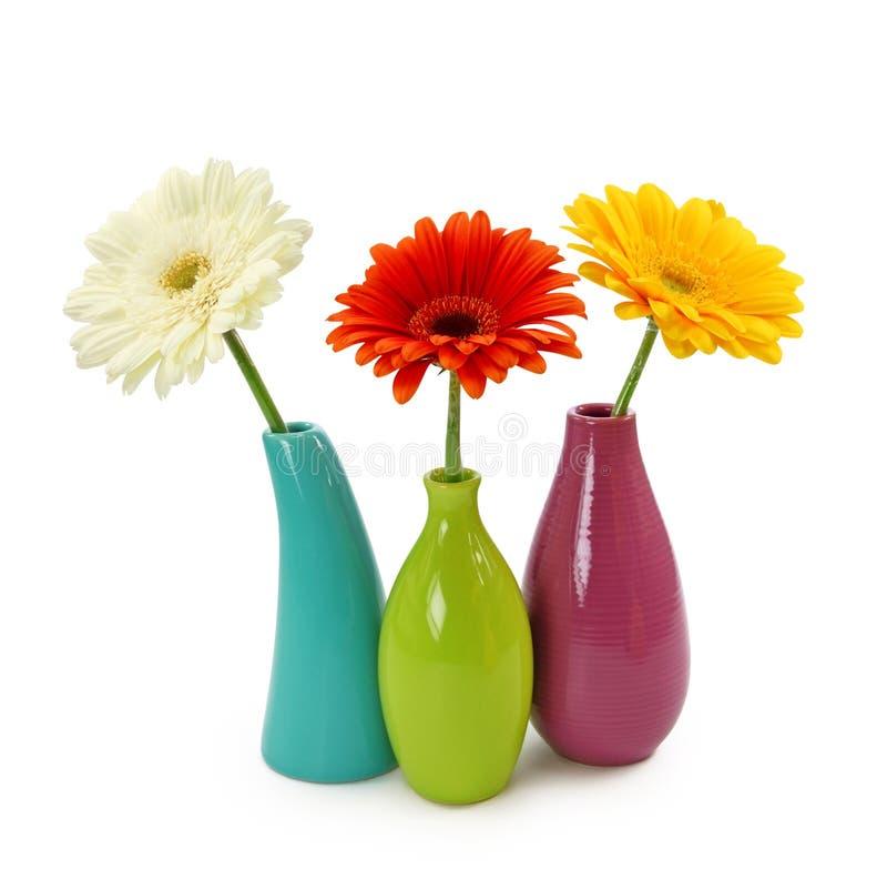 Bloemen in vazen stock foto's