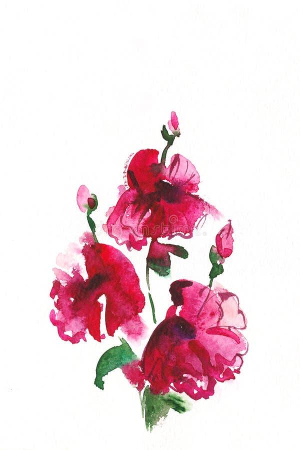 Bloemen waterverfillustratie. vector illustratie
