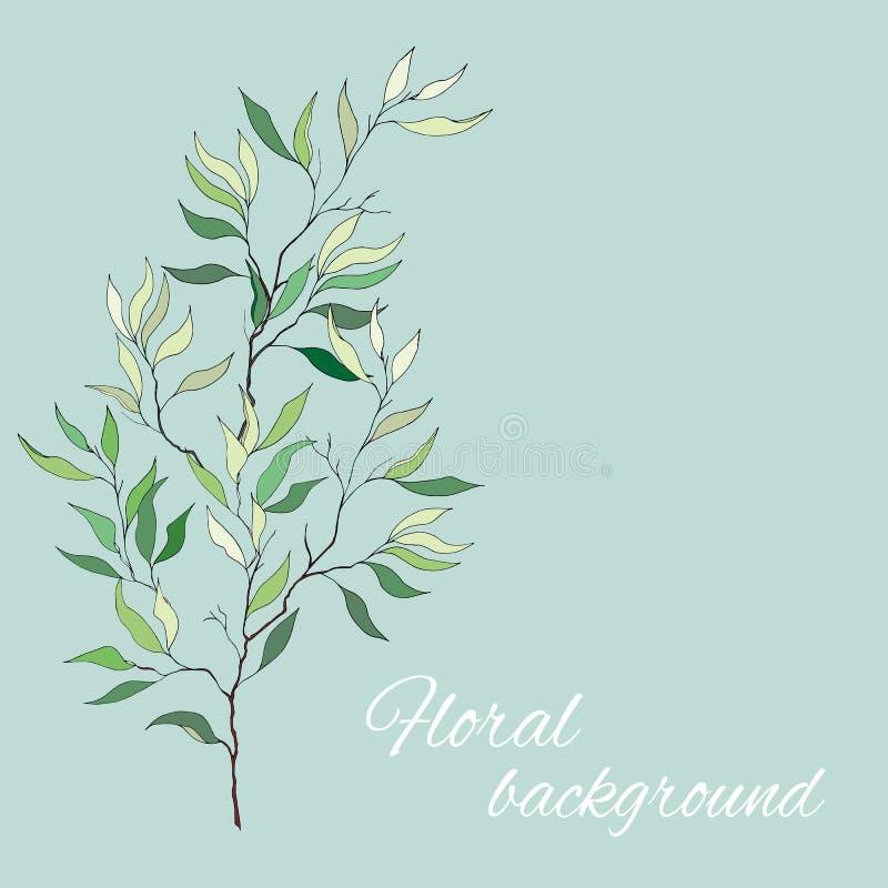 Bloemenachtergrond met gevoelige bladeren in schaduwen van groen Olive Branch Vector illustratie stock illustratie