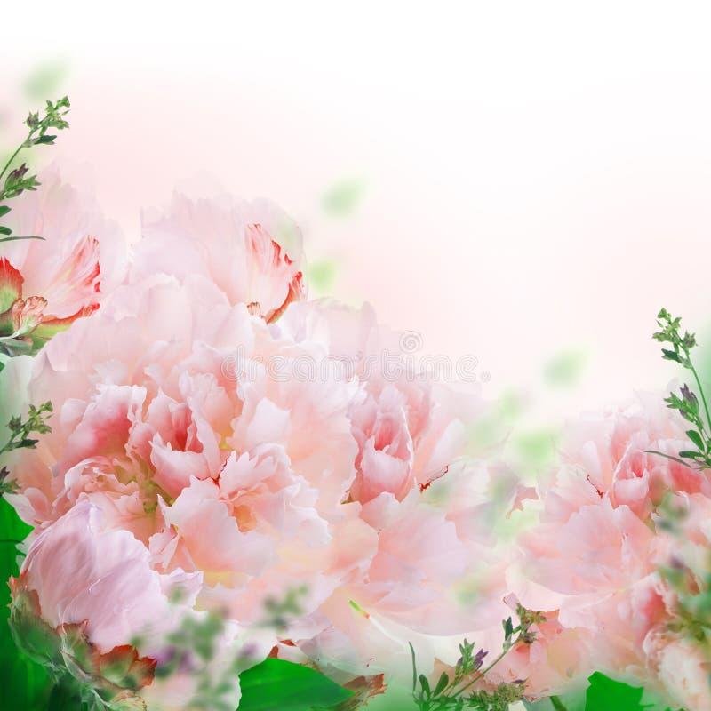 Bloemenachtergrond van rozen en lelies royalty-vrije illustratie