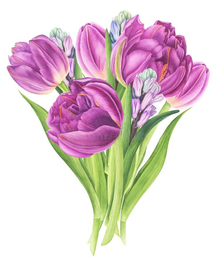 Bloemenboeket met tulpen en hyacinten, waterverf het schilderen royalty-vrije illustratie
