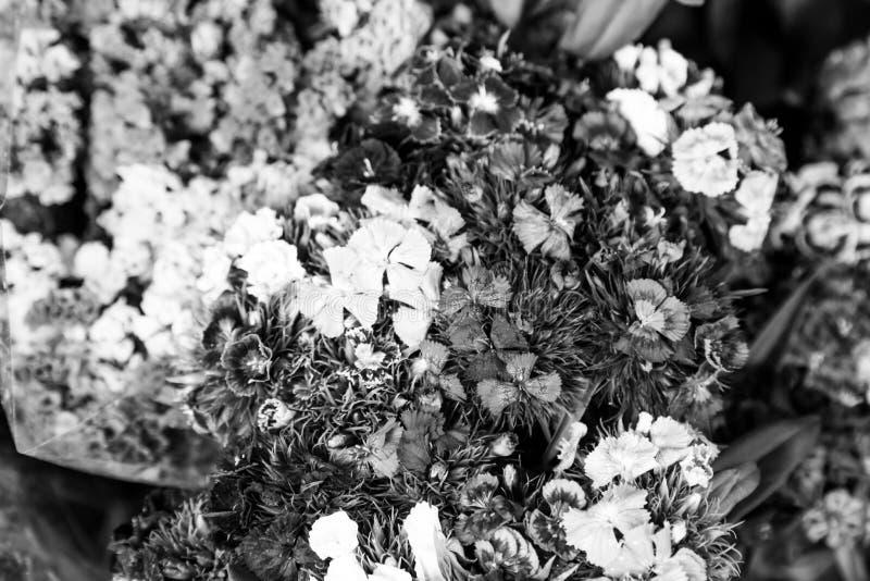 Bloemenboeketten in zwart-wit royalty-vrije stock afbeelding
