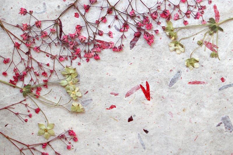 Bloemenfantasieachtergrond stock foto's