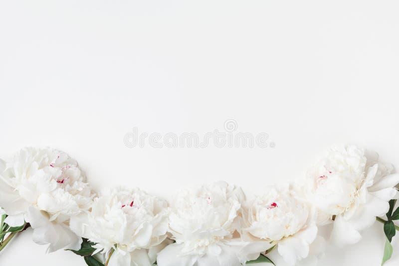 Bloemengrens van witte pioenbloemen op de bovenkantmening van de pastelkleurlijst vlak leg stijl stock foto