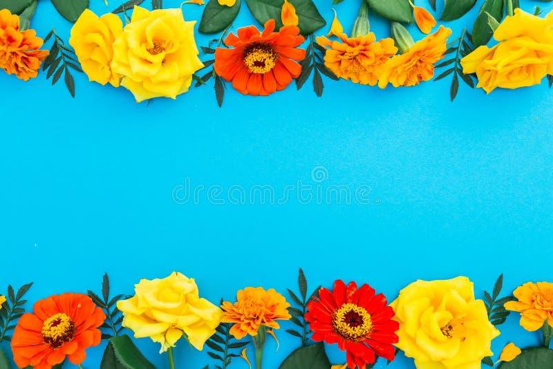 Bloemengrenskader van gele en rode bloemen op blauwe achtergrond Vlak leg, hoogste mening Bloemen achtergrond royalty-vrije stock afbeelding
