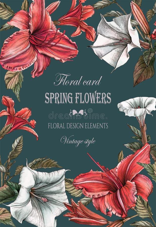 Bloemengroetkaart met lelies en doornappelbloemen stock illustratie