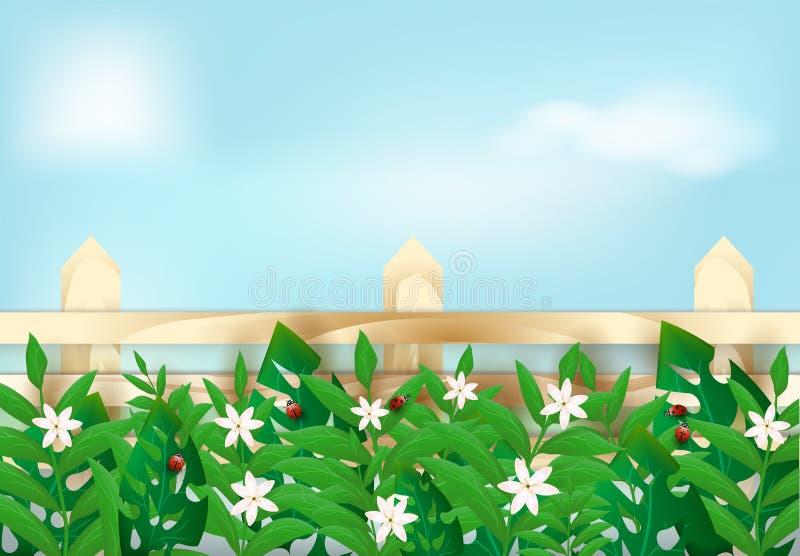 Bloemeninstallatie en lieveheersbeestje met houten omheining op blauwe hemelachtergrond vector illustratie