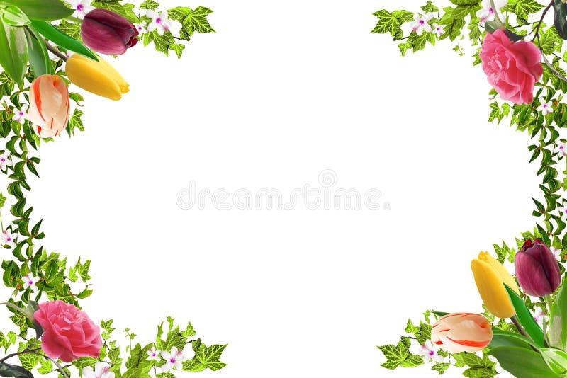 Bloemenkader, de lentestemming stock afbeelding