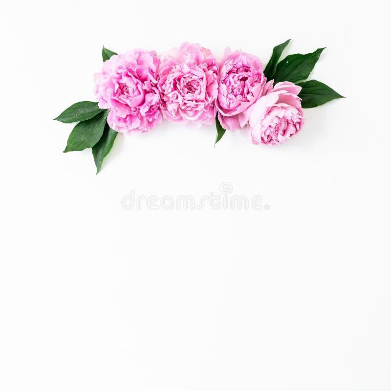 Bloemenkader met roze roze bloemen en bladeren witte achtergrond Vlak leg, hoogste mening De textuur van bloemen royalty-vrije stock afbeeldingen