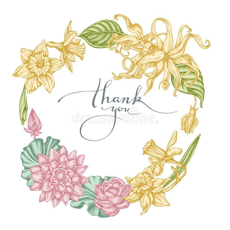 Bloemenkroon van pastelkleurkananga-olie, gele narcis, lotusbloem royalty-vrije illustratie