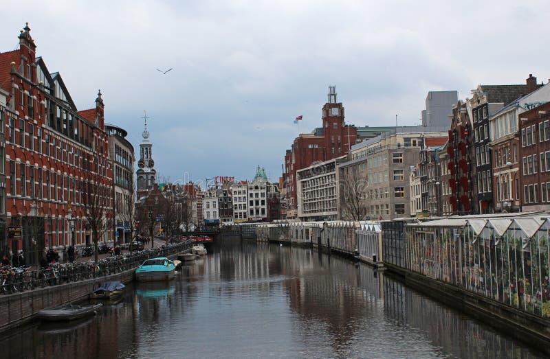 Bloemenmarkt (αγορά λουλουδιών) Άμστερνταμ στοκ φωτογραφίες