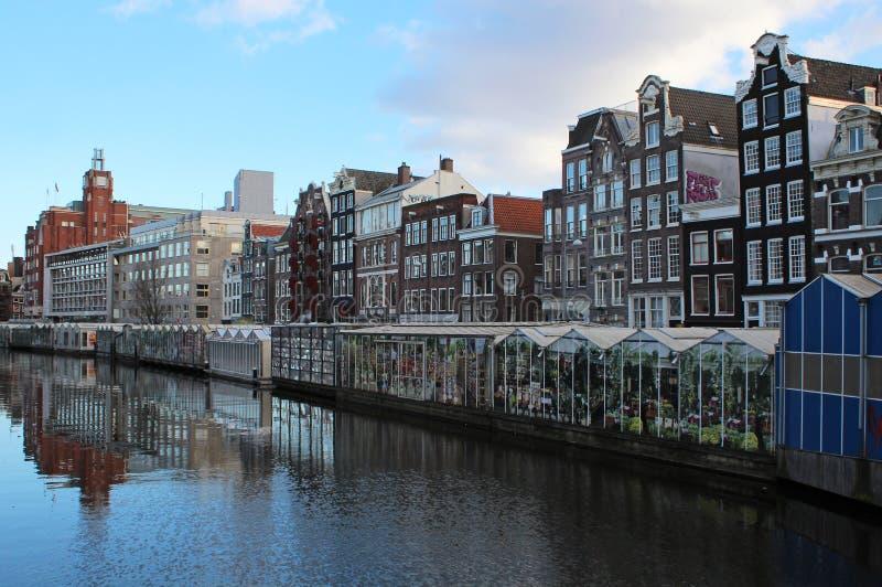 Bloemenmarkt (αγορά λουλουδιών) Άμστερνταμ στοκ φωτογραφία με δικαίωμα ελεύθερης χρήσης