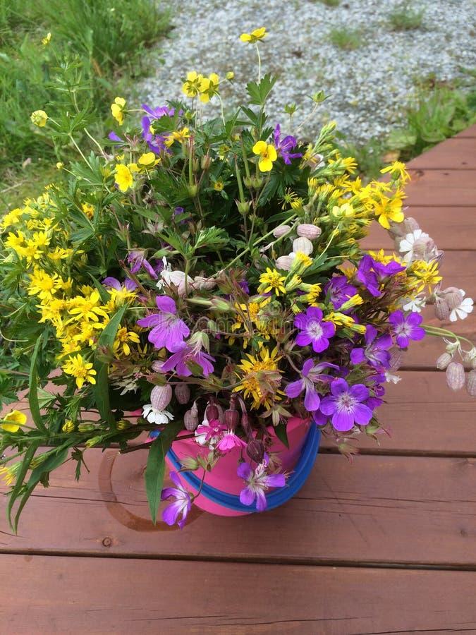 Bloemenouside in de tuin stock foto