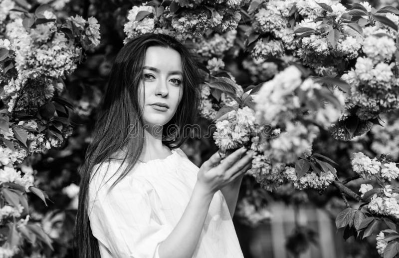 Bloemenparadijs Bloemenwinkel Meisje in de bloem van de kersenbloesem Sakuraboom het bloeien Zacht en teder Schitterende bloem en royalty-vrije stock fotografie