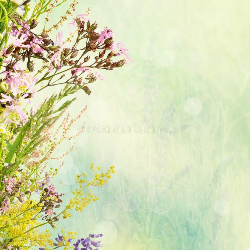 Bloemenpasen-achtergrond vector illustratie