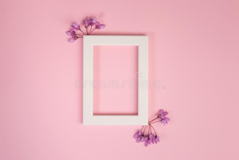 Bloemensamenstelling Purper bloemen en fotokader op pastelkleur roze achtergrond stock afbeelding