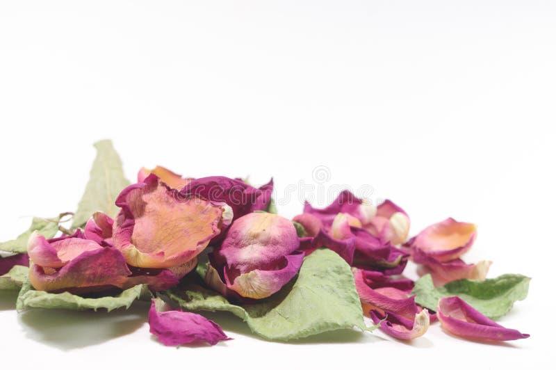 Bloemensamenstelling van droge roze bloemen De dag van de valentijnskaart `s Drie royalty-vrije stock afbeeldingen