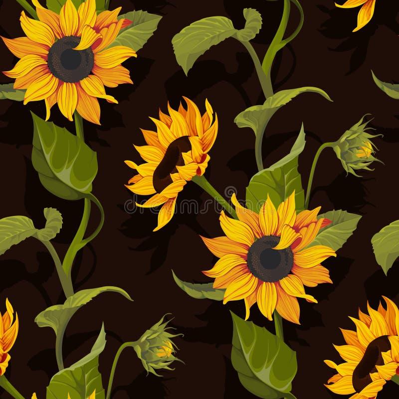 Bloementextuur van het zonnebloem de vector naadloze patroon op zwarte achtergrond stock afbeeldingen