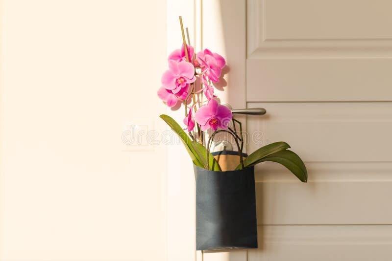 Bloemenverrassing op het deurhandvat Roze orchidee in giftzak op witte deur in de ruimte stock foto's