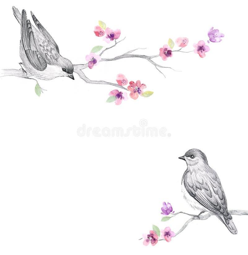 Bloemenwaterverfachtergrond met mooie bloemen stock illustratie