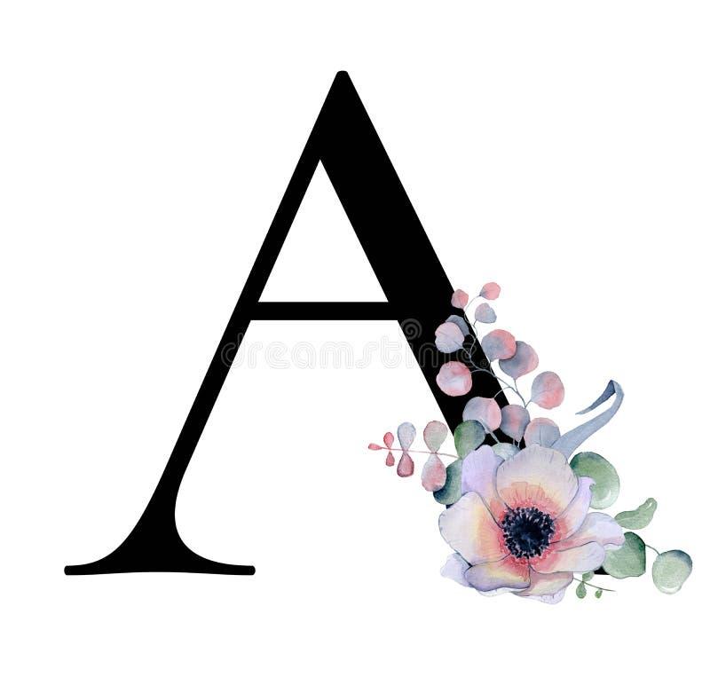 Bloemenwaterverfalfabet Ontwerp van de monogram bloeien het aanvankelijke brief A met hand getrokken pioen en de anemoon en zwart vector illustratie