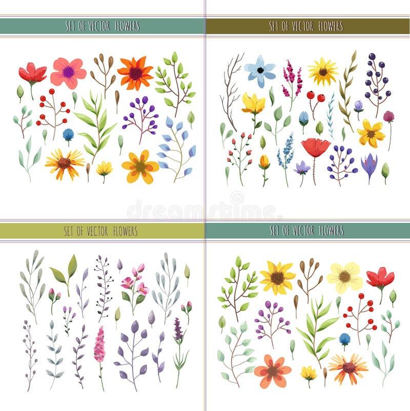 Bloemenwaterverfinzameling met bladeren en bloemen Huwelijksinzameling stock illustratie