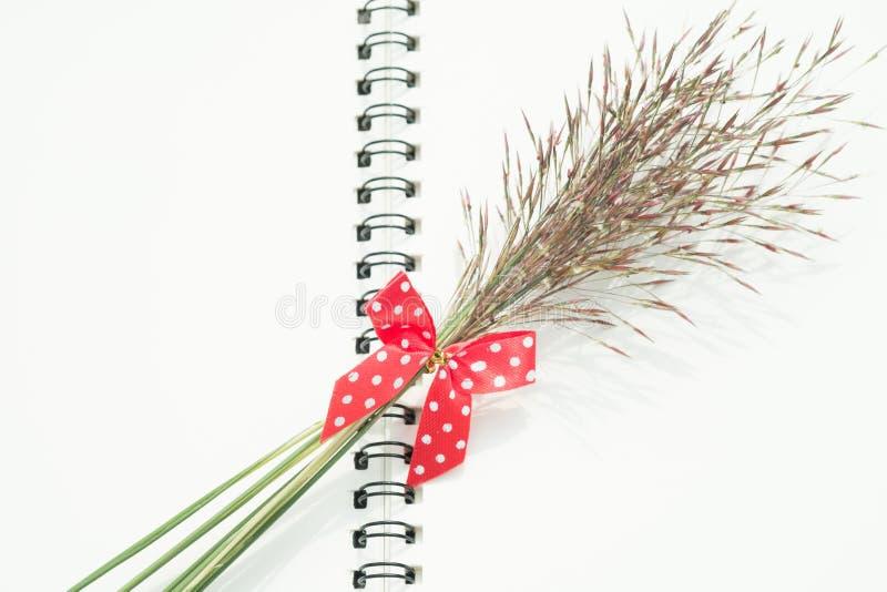 Bloemgras met rood boog en notitieboekje stock afbeelding