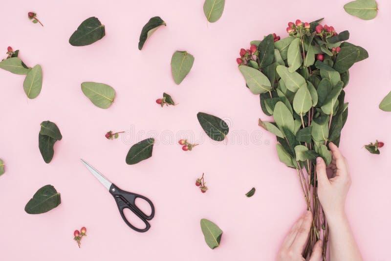 Bloemist die een boeket van mooie takken met rode bessen en groene bladeren maken De handen van de vrouw houden bloemen op roze a royalty-vrije stock afbeelding