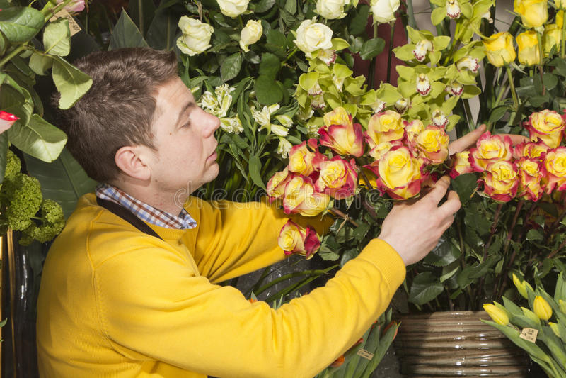 Bloemist die verse bloemen schikt royalty-vrije stock afbeelding